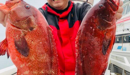 【お料理編】魚を捌くのは怖くない?釣った魚を捌く解説